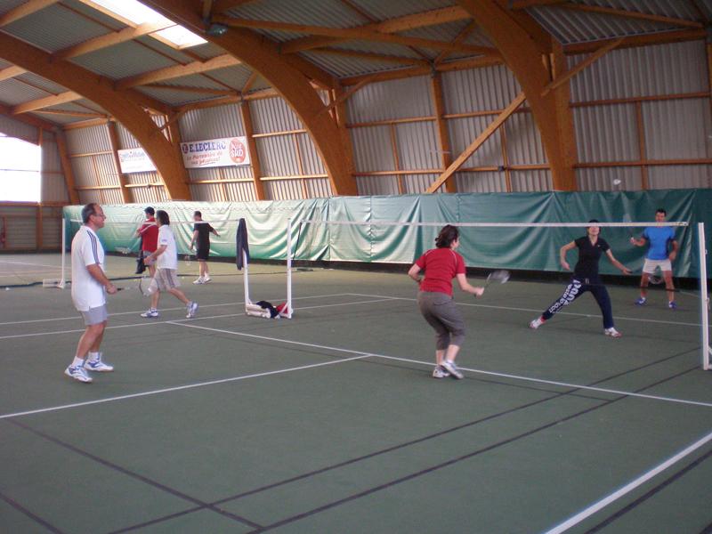 Court de badminton